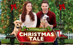 a-dog-walkers-christmas-featured1-439x283